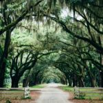 Explore Savannah GA Things To Do